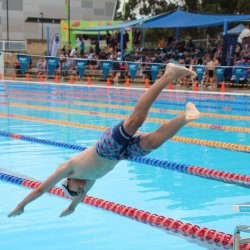 ACC Swimming Carnival 2018